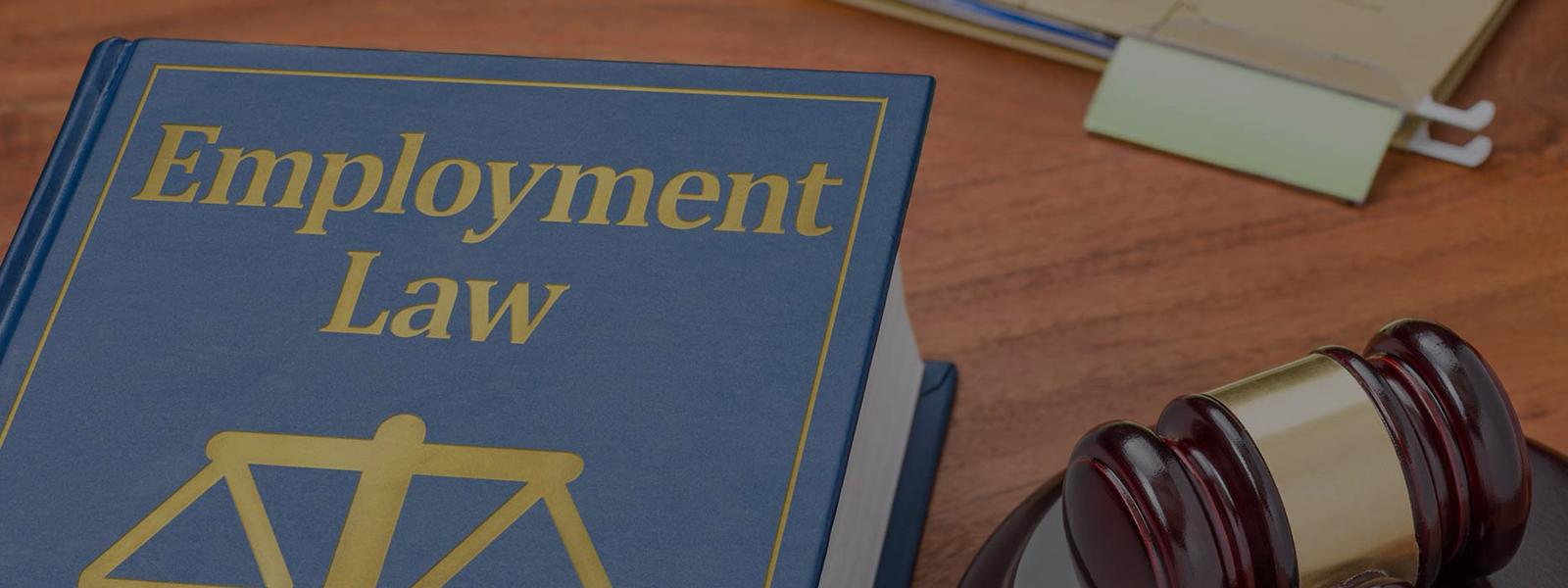 Employment Law Attorney Mn Employment Discrimination Lawyers